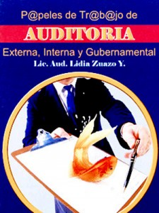 Papeles de Trabajo - Auditoria Externa, Interna y Gubernamental - Lidia Zuazo